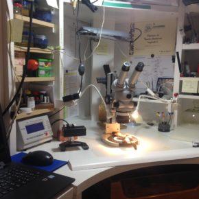 Alcuni strumenti di laboratorio